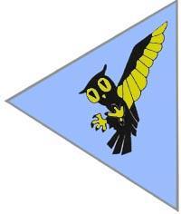 113 Eskadra Myśliwska